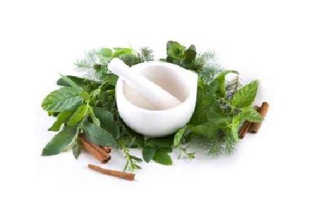 Chữa viêm họng hạt bằng thuốc nam hiệu quả, an toàn